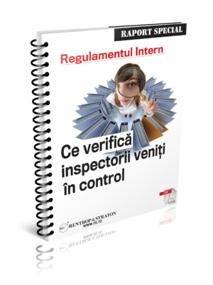 Regulamentul Intern - Ce verifica inspectorii veniti in control?